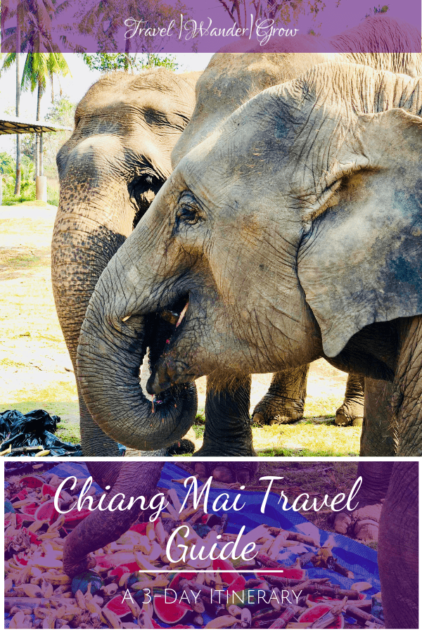 Chiang Mai is a wonderful mountain city with plenty of things to do for the visiting tourist. In this 3-Day Chiang Mai itinerary, get tips on which hotels to stay in, what food to eat, and which activities to do. This includes hanging with elephants, temples, markets and more. See the 3-D art museum known as Art in Paradise and try your hand at cooking cuisine. #chiangmaitravelguide #chaingmaiitinerary