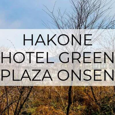 Hakone Green Plaza Hotel: Onsen & More!