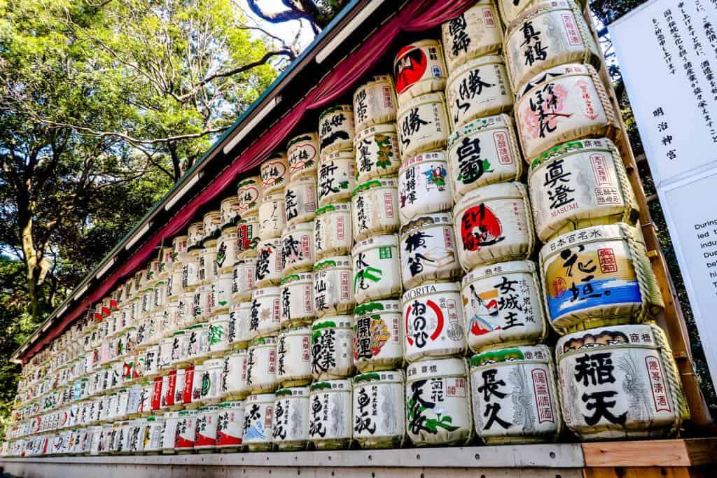 Meiji Shrine Saki