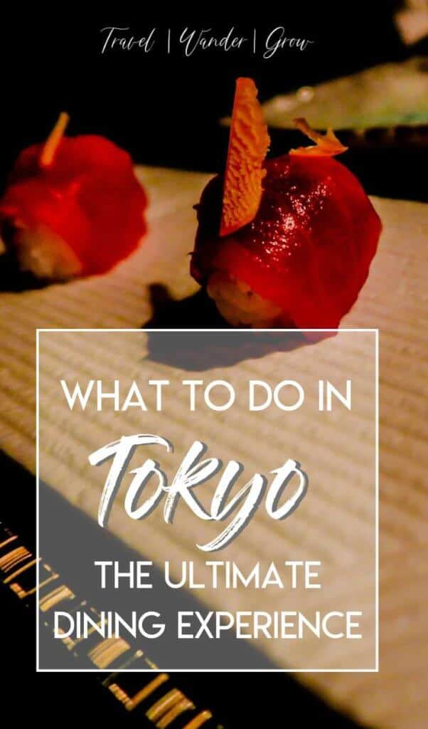 Looking for a unique dining experience in Tokyo? This post will give you all the details on the best restaurant in Tokyo (Ninja Style)! Learn why this is one of the best things to do in Tokyo. #thingstodoinTokyo #Tokyorestaurants