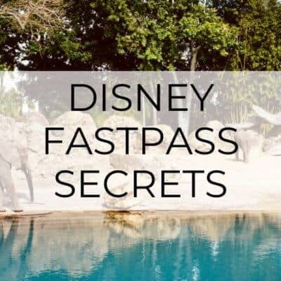 The Ultimate Disney FastPass Secrets!